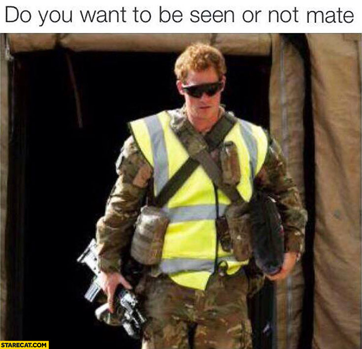 "A photo of Prince Harry in camouflage fatigues and a high-visibility safety vest with the words ""Do you want to be seen or not mate"""
