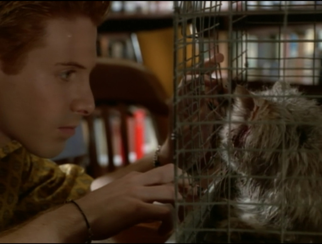 Oz leaning real close to the cage with the dead cat in it. That cat, by the way, is super dirty and gross and has blood coming out of its ears.