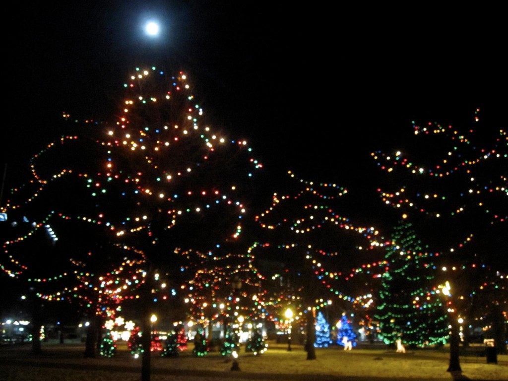 Bronson Park all dressed up for Christmas. Lots of trees and more Christmas lights than reasonable.