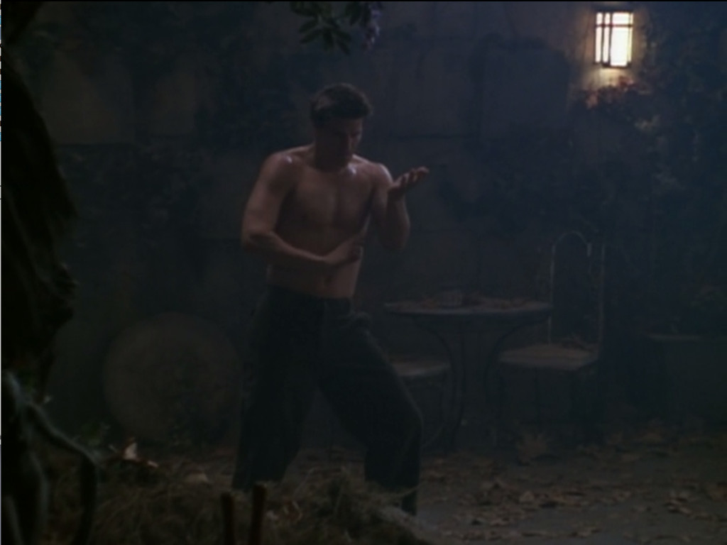Angel is standing in a darkened courtyard, doing tai chi poses that show off his powerful muscles. His skin is covered in a sheen of sweat. For some reason.