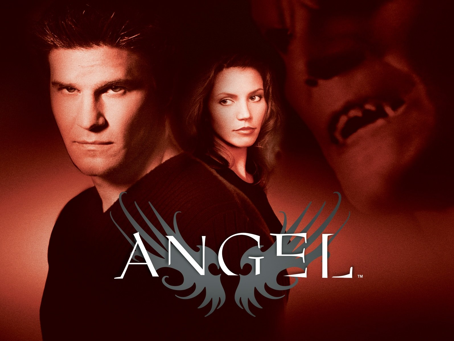 The Angel season 1 DVD cover, with Angel brooding into the camera. Cordelia stands slightly behind him, while an Olan Mills-esque floating image of Angel's vamp face is in the upper right corner.