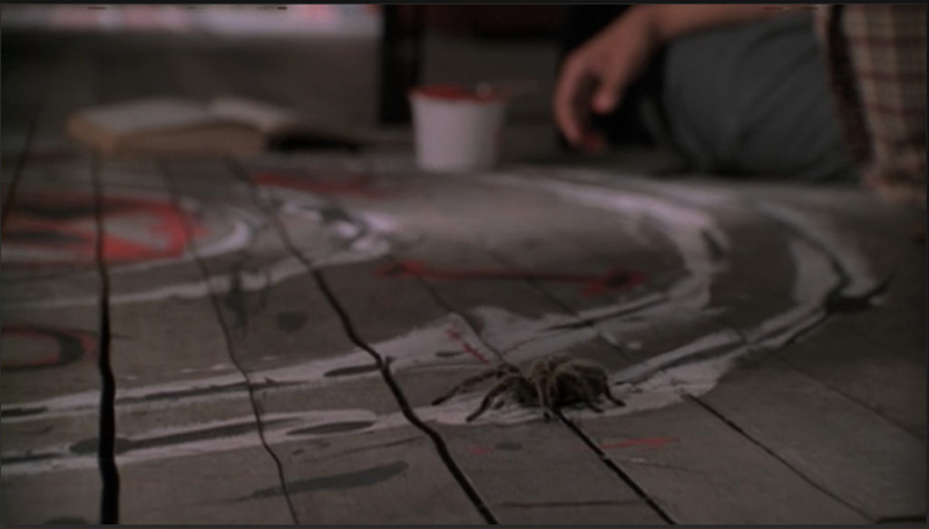A warped, unfinished wooden floor and a portion of the painted symbol. A tarantula is moseying his way along the perimeter.